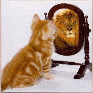 cat-lion_mirror.jpg