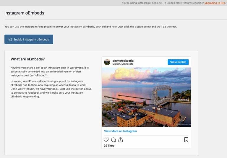 instagram-oembeds-plugin-768x535.jpg